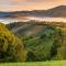 Lazítás a Hargita-hegységben