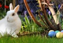 Húsvéti kikapcsolódás Erdély szívében