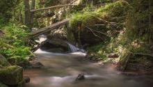 Vár az erdélyi nyár! Mountain RestPanzió